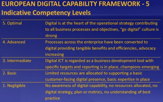 5 indicative competencey levels by Kieran O'Hea for the European Digital Capability Network